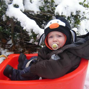Sledding in the snow