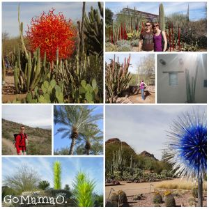 Striking views of Chihuly exhibit and scenes of Phoenix, Arizona.