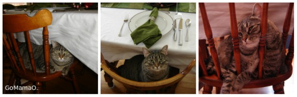 Kitchen Table with cat 2007