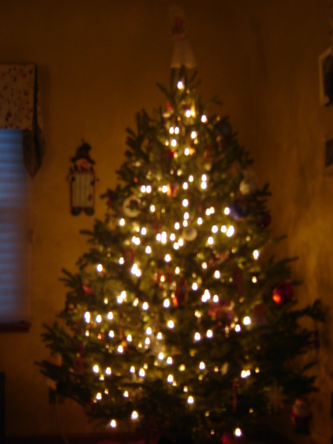 Our Christmas Tree with white lights 2012