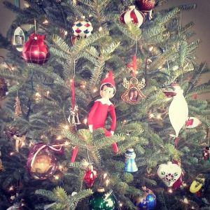 Fred the Elf Go Mama O