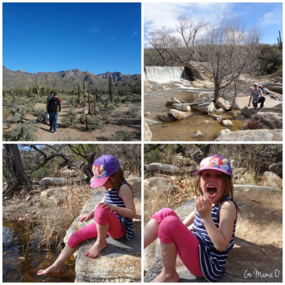 Hiking Sabino Canyon