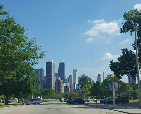 View of the Chicago Skyline from Lincoln Park