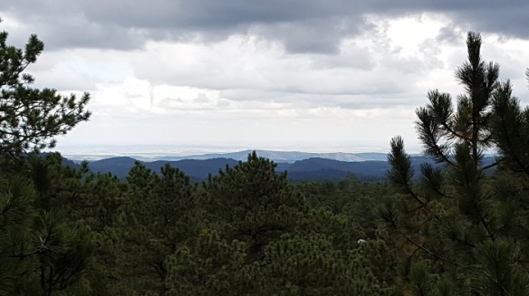 black hills view from Mt. Rushmore