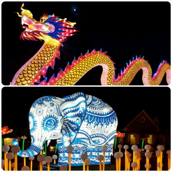 China Lights collage dragon, elephant