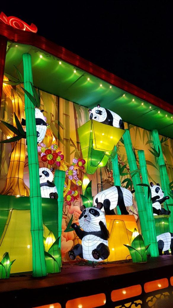 China Lights Panda Scene