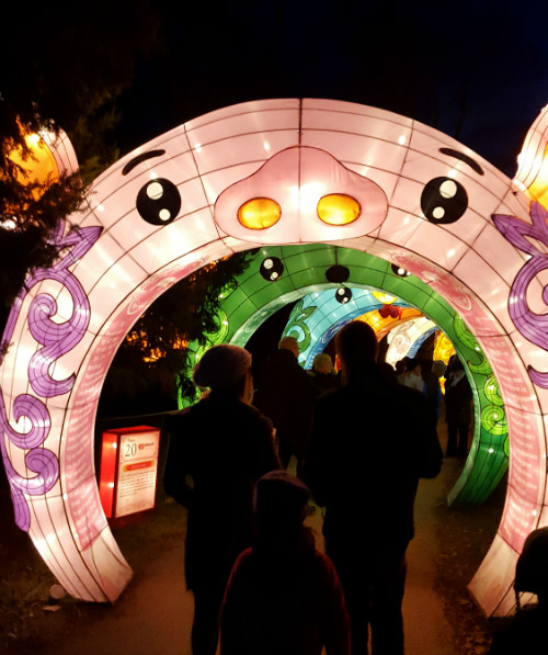 Chinese zodiac tunnel Go Mama O.