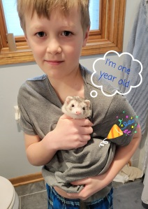 Blaze the ferret and her human